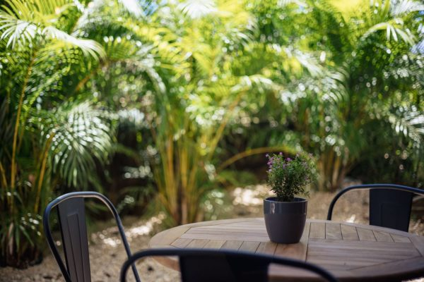 small patio with lots of green